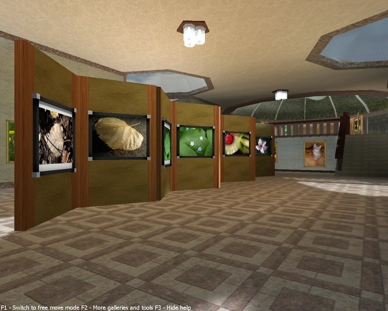 Art gallery my pictures 3d